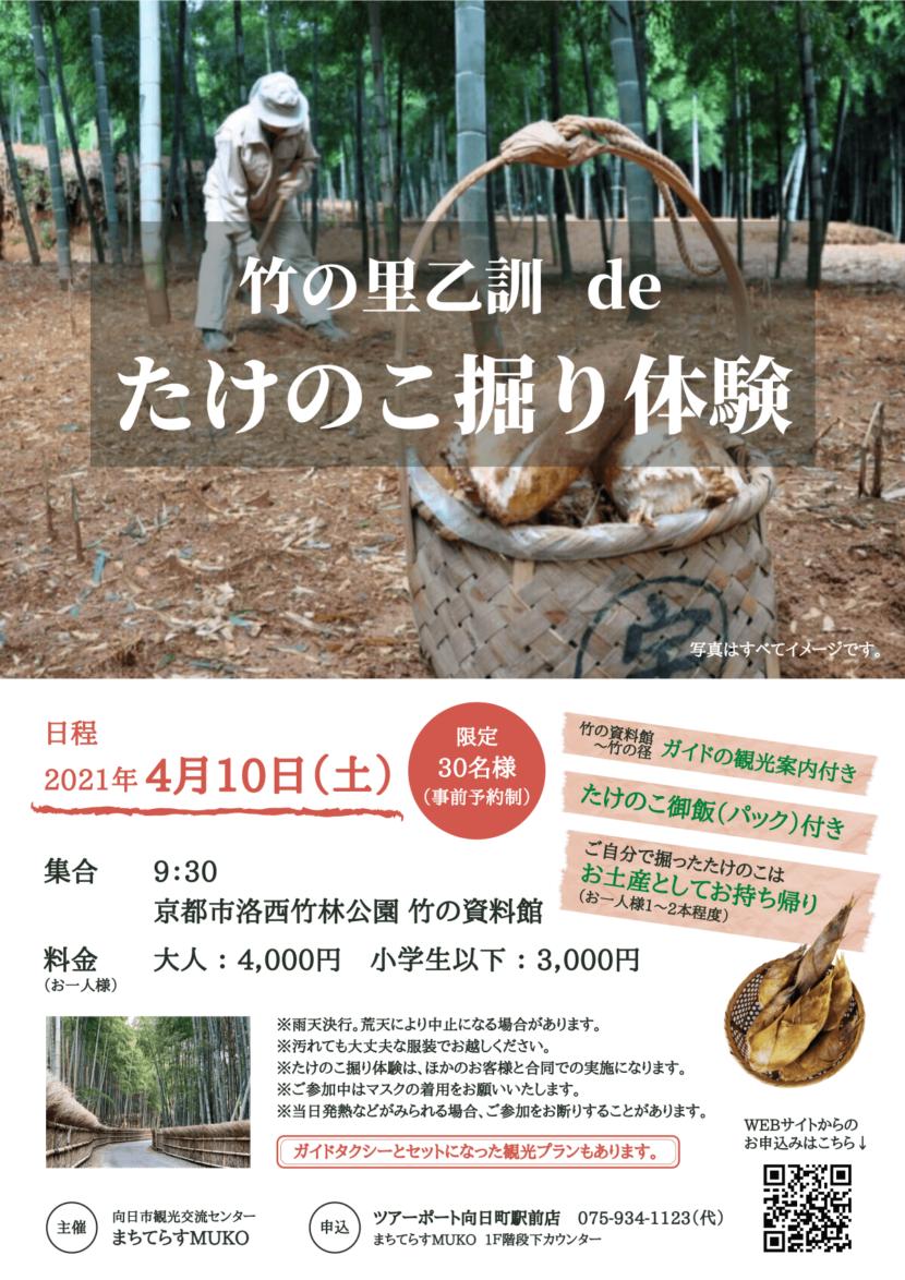竹の里乙訓deたけのこ掘り体験
